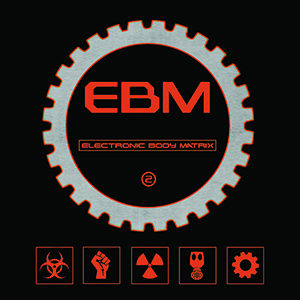 Electronic Body Matrix - Alfa Matrix